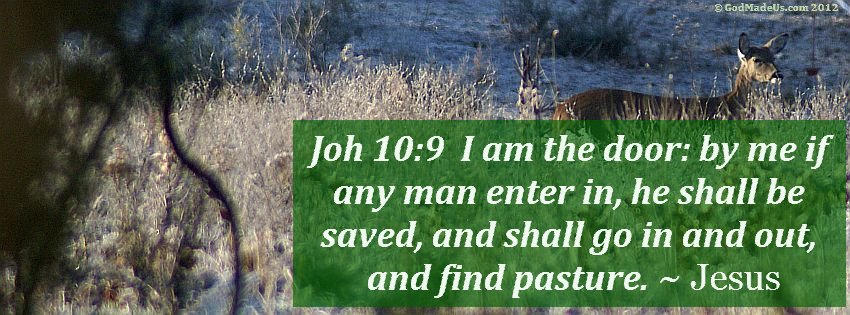 Image of a deer in a field of tall grass with the words: Joh 10:9 I am the door: by me if any man enter in, he shall be saved, and shall go in and out, and find pasture. ~ Jesus