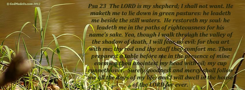 Image of grass on the bank of a pond with the words: Psa 23:1 A Psalm of David. The LORD is my shepherd; I shall not want. Psa 23:2 He maketh me to lie down in green pastures: he leadeth me beside the still waters. Psa 23:3 He restoreth my soul: he leadeth me in the paths of righteousness for his name's sake. Psa 23:4 Yea, though I walk through the valley of the shadow of death, I will fear no evil: for thou art with me; thy rod and thy staff they comfort me. Psa 23:5 Thou preparest a table before me in the presence of mine enemies: thou anointest my head with oil; my cup runneth over. Psa 23:6 Surely goodness and mercy shall follow me all the days of my life: and I will dwell in the house of the LORD for ever.