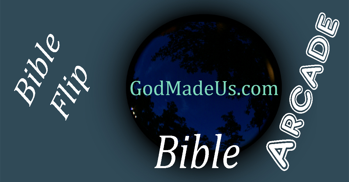 Bible games on GodMadeUs.com Bible Flip