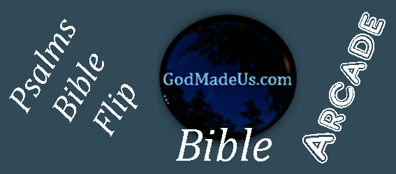 Bible games on GodMadeUs.com Bible Flip