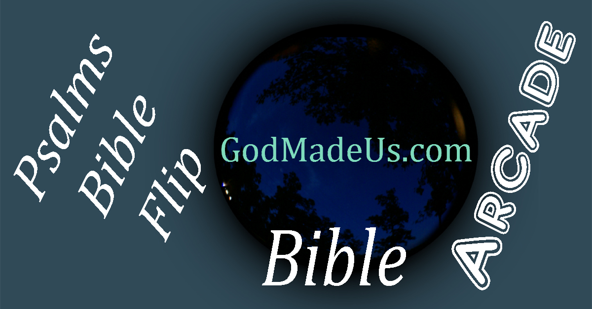 Bible games on GodMadeUs.com Psalms Bible Flip