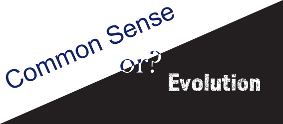 Common Sense or evolution?