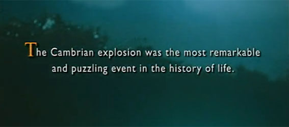 The Cambrian explosion was the most remarkable and puzzling event in the history of life.