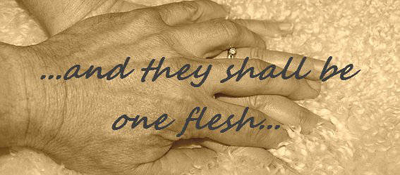 Picture of a man and a womans hand and the words and they shall be one flesh