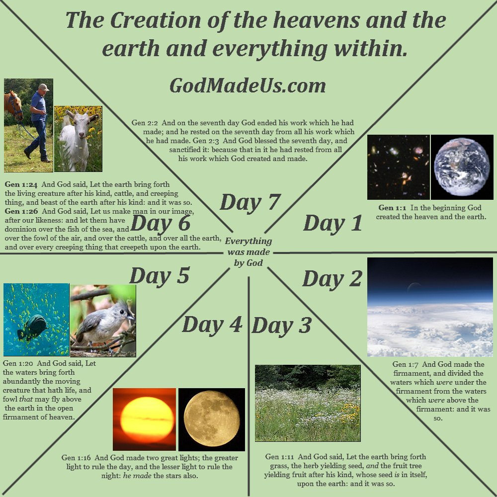 Picture of a chart showing the creation account illustrating what was created on each day and showing God rested on the seventh day Sabbath as per Genesis chapter 1 and 2. GodMadeUs.com