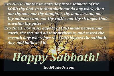 Exo 20:10 But the seventh day is the sabbath of the LORD thy God: in it thou shalt not do any work, thou, nor thy son, nor thy daughter, thy manservant, nor thy maidservant, nor thy cattle, nor thy stranger that is within thy gates: Exo 20:11 For in six days the LORD made heaven and earth, the sea, and all that in them is, and rested the seventh day: wherefore the LORD blessed the sabbath day, and hallowed it.